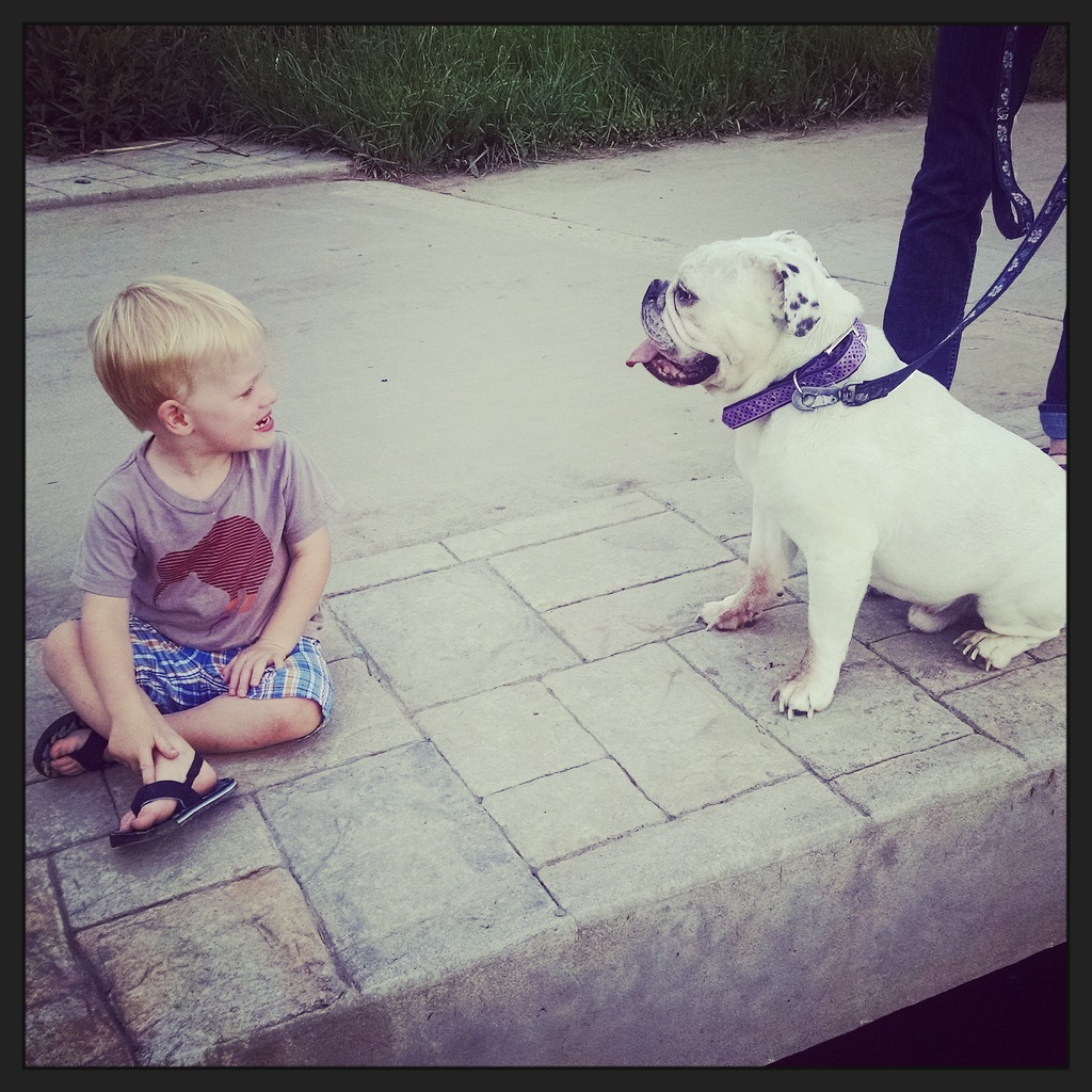 A boy and his bulldog sitting by the creek